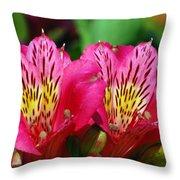 Purple Peruvian Lily Throw Pillow
