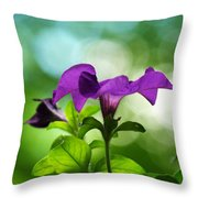 Purple Petunia On A Cool Spring Day Throw Pillow