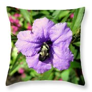 Purple Petunia With A Bee Throw Pillow