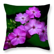 Purple Phlox By Earl's Photography Throw Pillow