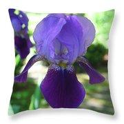 Purple Pleaser Throw Pillow