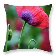 Purple Poppy Flower Throw Pillow