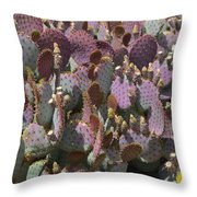 Purple Prickly Pear 2 Throw Pillow