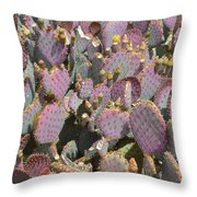 Purple Prickly Pear 3 Throw Pillow