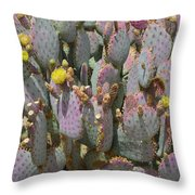 Purple Prickly Pear 1 Throw Pillow