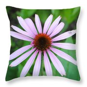 Purple Rays Throw Pillow