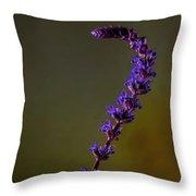 Purple Salvia Flower Throw Pillow