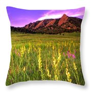 Purple Skies And Wildflowers Throw Pillow