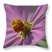 Purple Soft Petals Throw Pillow