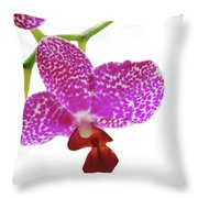 Purple Spotted Orchid On White Throw Pillow
