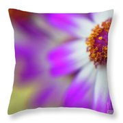 Purple Spring 12 Throw Pillow