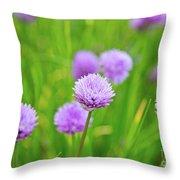 Purple Spring 14 Throw Pillow