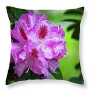 Purple Spring 15 Throw Pillow