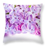 Purple Spring Lilac Flowers Blooming Throw Pillow