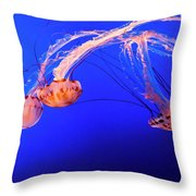 Purple Striped Jelly Throw Pillow