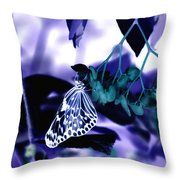 Purple Teal And A White Butterfly Throw Pillow