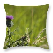 Purple Thistle Throw Pillow