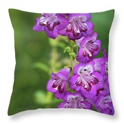 Purple Trumpet Flowers  Throw Pillow