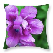 Purple Tulip Blossom With Dew Drops On The Petals Throw Pillow