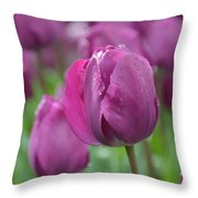 Purple Tulip With Water Drops Throw Pillow