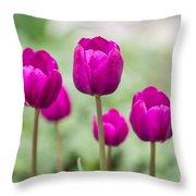 Purple Tulips 1 Throw Pillow