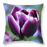 Purple Tulips With Dew Drops On The Outside Of The Petals Throw Pillow