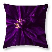 Purple Velvet Throw Pillow
