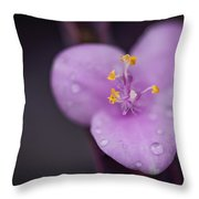 Purple Wandering Jew Throw Pillow