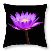 Purple Water Lily Flower Throw Pillow