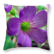Purple Wildflowers Macro 1 Throw Pillow