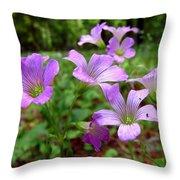Purple Wildflowers Macro 2 Throw Pillow