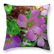 Purple Wildflowers Macro 3 Throw Pillow