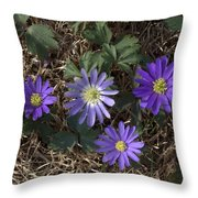 Purple Yard Flowers Throw Pillow