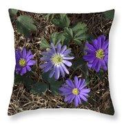 Purple Yard Flowers Throw Pillow