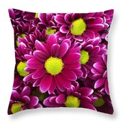 Purple Yellow Flowers Throw Pillow