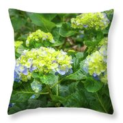 Purplea And Yellow Hydrangea Flowers Throw Pillow
