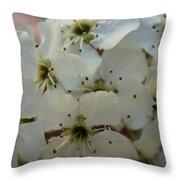 Purpleleaf Sand Cherry Blossoms Throw Pillow