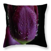 Purplelicious Throw Pillow by Tracy Hall