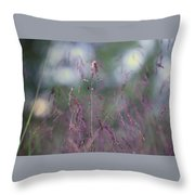 Purpletop, Tridens Flavus, A Native Grass Species, East Coast, United States. Throw Pillow