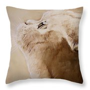 Purty Face Throw Pillow