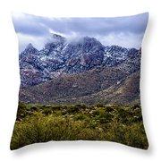 Pusch Ridge Snow No8 Throw Pillow