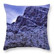 Pusch Ridge Snowfall Throw Pillow