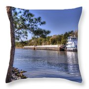 Push Baby Push Throw Pillow