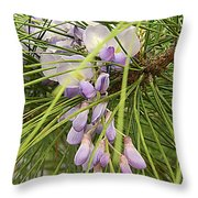 Pushing Though Or Wisteria And Long Needle Pine Throw Pillow