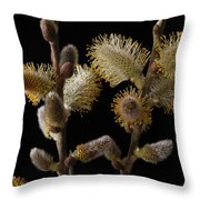 Pussy Willow Throw Pillow