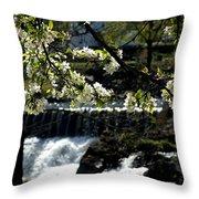 Putnam Spring Throw Pillow