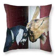 Putting Our Heads Together Throw Pillow