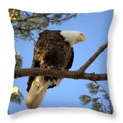 Puzzled 2 Throw Pillow