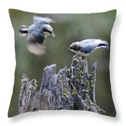 Pygmy Nuthatch In Flight Throw Pillow