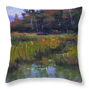 Pyramid Lake Marsh Throw Pillow